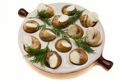 Escargot用黄油和香料在煎锅,蜗牛法国纤巧  免版税图库摄影