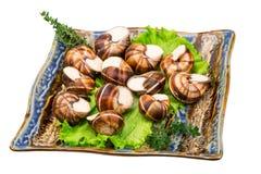 Escargot foto de stock