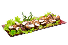 Escargot Royalty Free Stock Image