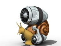 escargot Image libre de droits