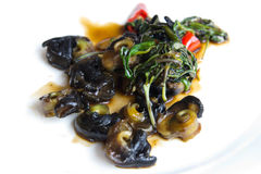 Escargot, appetizer. Chinese style fry escargot with green vegetable and red chilli Stock Photo