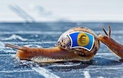 Escargot avec les couleurs de l'euro drapeau de devise encouragé par des autres Images libres de droits