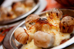Escargot With Cheese. Baked escargot served with cheese Royalty Free Stock Images