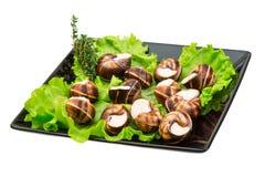 Escargot Stock Images