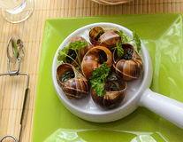 Escargot, culture française Photographie stock