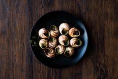 Escargot de Bourgogne - alimento do caracol com manteiga de ervas, prato do gourmet de França fotografia de stock