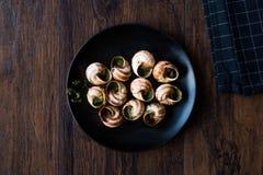 Escargot de Bourgogne - alimento do caracol com manteiga de ervas, prato do gourmet de França foto de stock