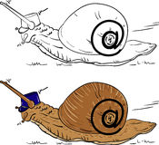 Escargot de courrier Images libres de droits