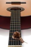 Escargot et guitare Image libre de droits
