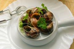 Escargot, French Culture. Escargot  French Culture  Garlic  Sauces  Food Stock Photography