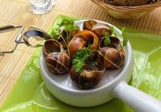 Escargot, French Culture. Escargot  French Culture  Garlic  Sauces  Food Royalty Free Stock Photos