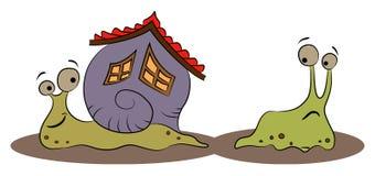 Escargot heureux avec une maison et le lingot Photographie stock
