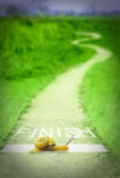 Escargot, ligne d'arrivée, concept Photo libre de droits