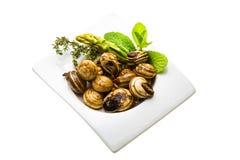 Escargot met asperge, rozemarijn, zwezerik en tomaat Stock Foto's
