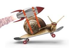 Escargot pressé Image libre de droits