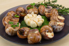 Escargot Stock Photo