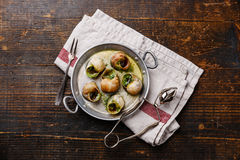 Escargot Snails with garlic herbs butter Royalty Free Stock Images