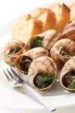 Escargot, snails a la bourguignonne Stock Photos