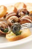 Escargot, snails a la bourguignonne Stock Photo