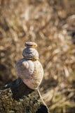 Escargot sur des escargots Photos libres de droits