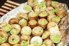 Escargots用大蒜黄油 库存图片