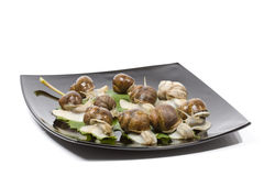 Escargots in a black plate Royalty Free Stock Photos