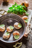 Escargots délicieux avec du beurre d'ail Image stock