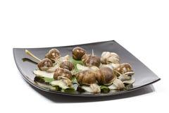 Escargots dans une plaque noire Photos libres de droits