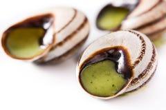 Escargots de Bourgogne royalty free stock images
