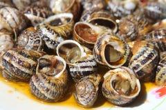 Escargots de Gre?? Image stock