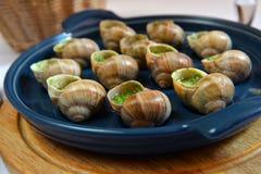 Escargots de raisin cuits au four Photos libres de droits
