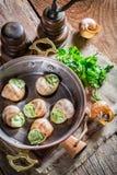 Escargots frais avec du beurre d'ail Photographie stock libre de droits