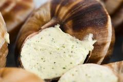 Escargots with garlic butter Royalty Free Stock Photos