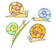 Escargots mignons Photographie stock libre de droits