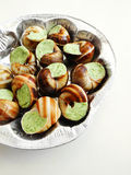 Escargots prepared for baking. A tray of raw escargots or snails, stuffed with mixture of butter and finely chopped herbs mixture, ready for baking in oven Stock Photos