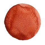 Escarlate do círculo do marrom da aquarela no branco isolado ilustração do vetor