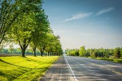Escarpment okręg administracyjny, Ontario Zdjęcia Royalty Free