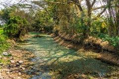 Escasez de agua Imagen de archivo libre de regalías