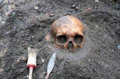 Escavação arqueológico com do crânio o meio ainda enterrado na terra Imagens de Stock Royalty Free