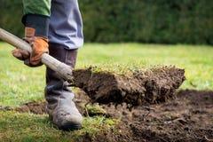 Escavação do gramado Foto de Stock