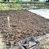 Escavação do inverno Imagem de Stock Royalty Free