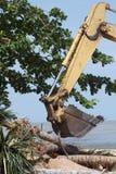 Escavatori, suolo e piante. fotografia stock