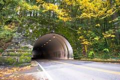 Escave um túnel através da rocha coberta com as árvores do musgo e do outono Imagem de Stock