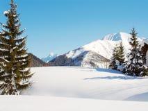 Escena alpestre de la nieve del invierno Foto de archivo