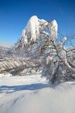 Escena alpina del invierno Foto de archivo libre de regalías