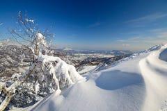 Escena alpina del invierno Imágenes de archivo libres de regalías