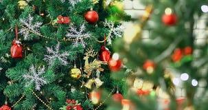 Escena ascendente cercana VDO del árbol de navidad hermoso borroso almacen de video