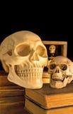 Escena asustadiza de Halloween de los cráneos Fotografía de archivo libre de regalías