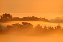 Escena brumosa de la mañana Fotos de archivo libres de regalías