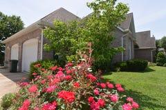 Escena casera con las rosas y los arbustos Imagen de archivo